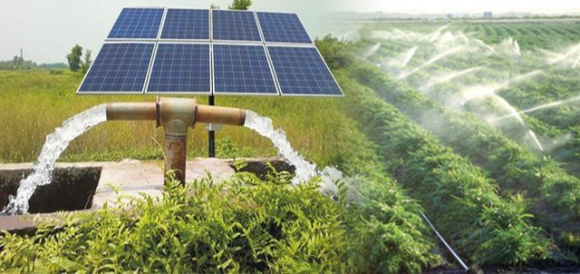 Gujarat S Solar Irrigation Cooperative Has A Solution For