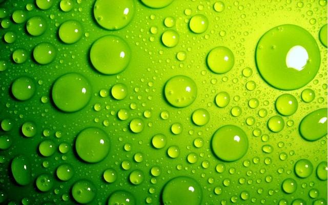 Green-Background-Wallpaper-1280x800