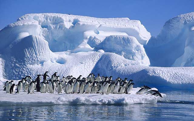 Antarctica ice shslf