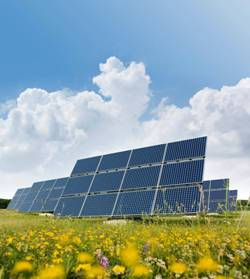 Solar-Array-Green-Field